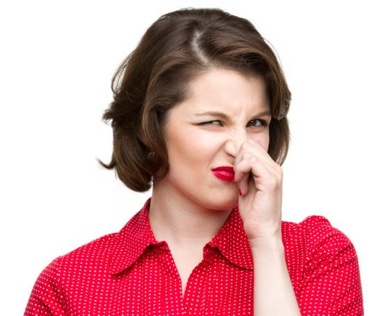 5 Tips For Removing Indoor Odors