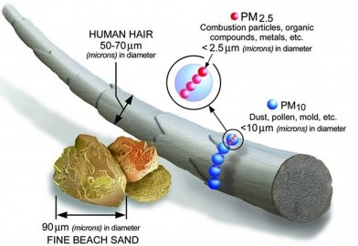 A government graphic shows the size of PM2.5 particles - those smaller that 2.5 microns in diameter- compared to dust, sand, a human hair and other items. The PM2.5 partciles are represented by the small red dots above.