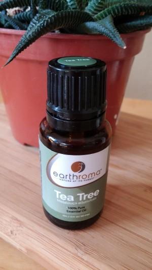 tea tree oil for mold